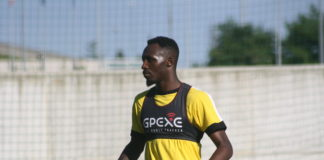 Seko Fofana, Udinese 2017